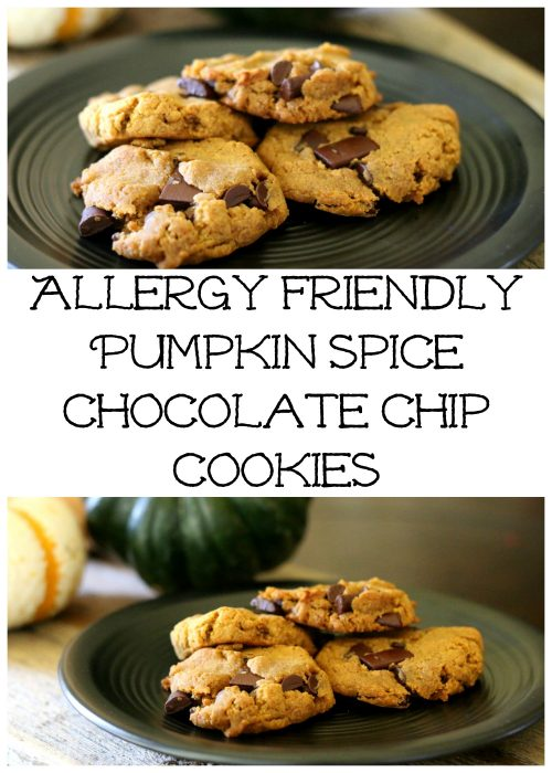 allergy friendly pumpkin spice chocolate chip cookies